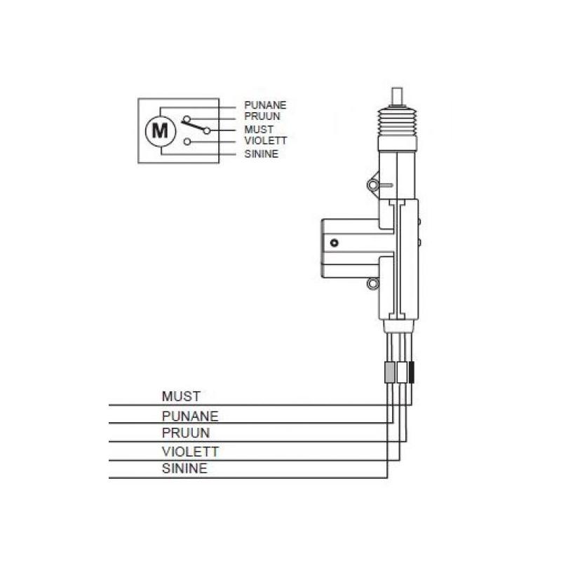 Wiring Diagram For Door Lock Actuators
